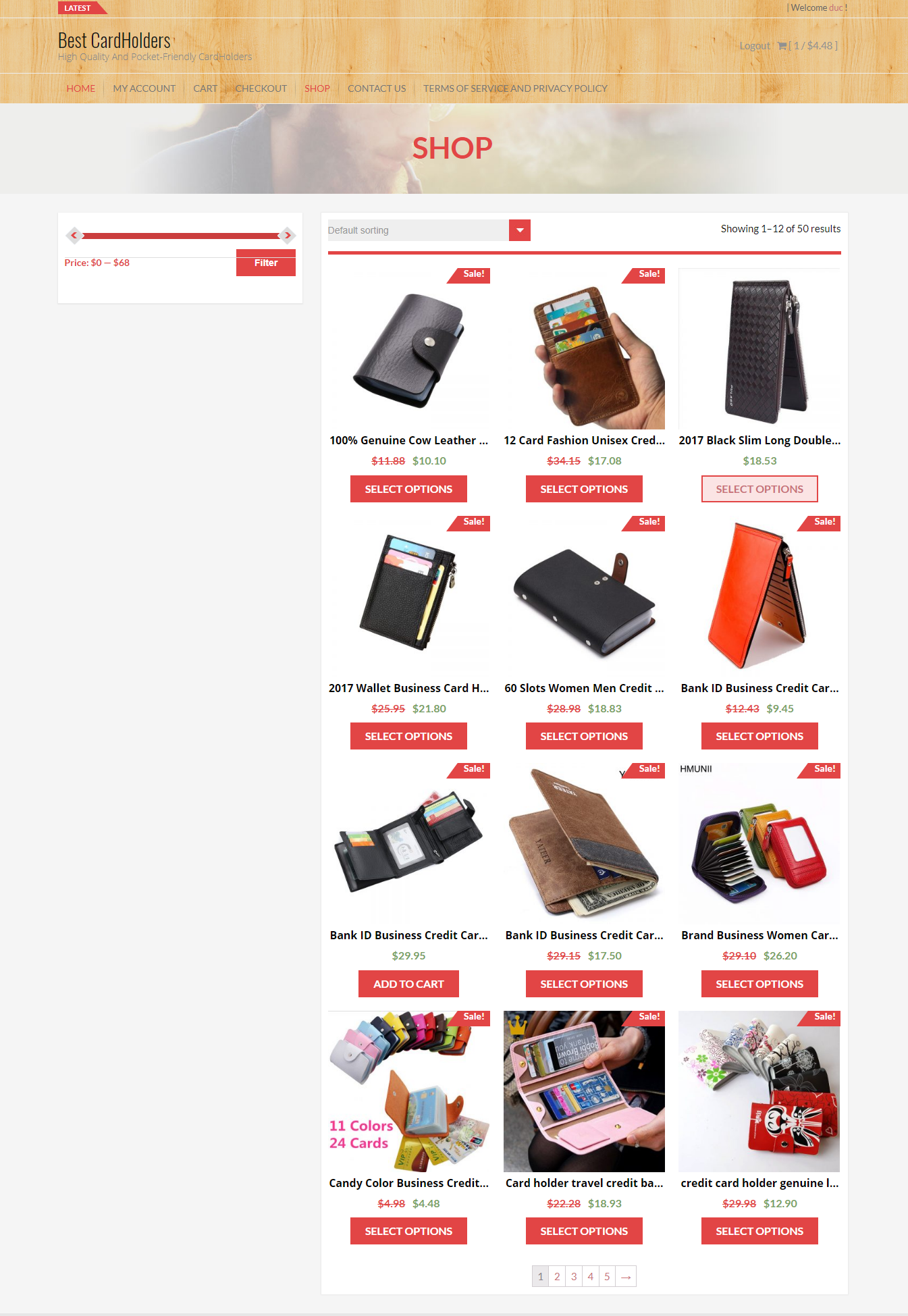 build complete autopilot Aliexpress dropshipping wordpress website for you