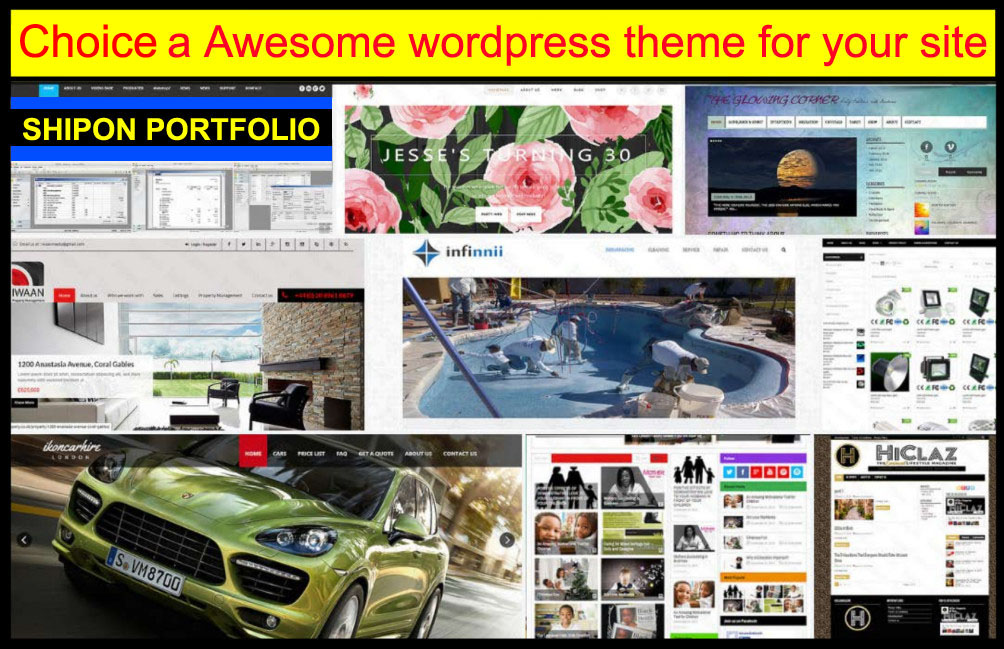 customization any wordpress site