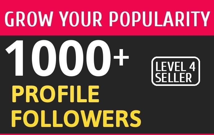 Add 1000 High Quality Fast Profile Followers