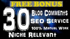 CREATE 30 NICHE RELEVANT BLOG COMMENTS ON HIGH PR