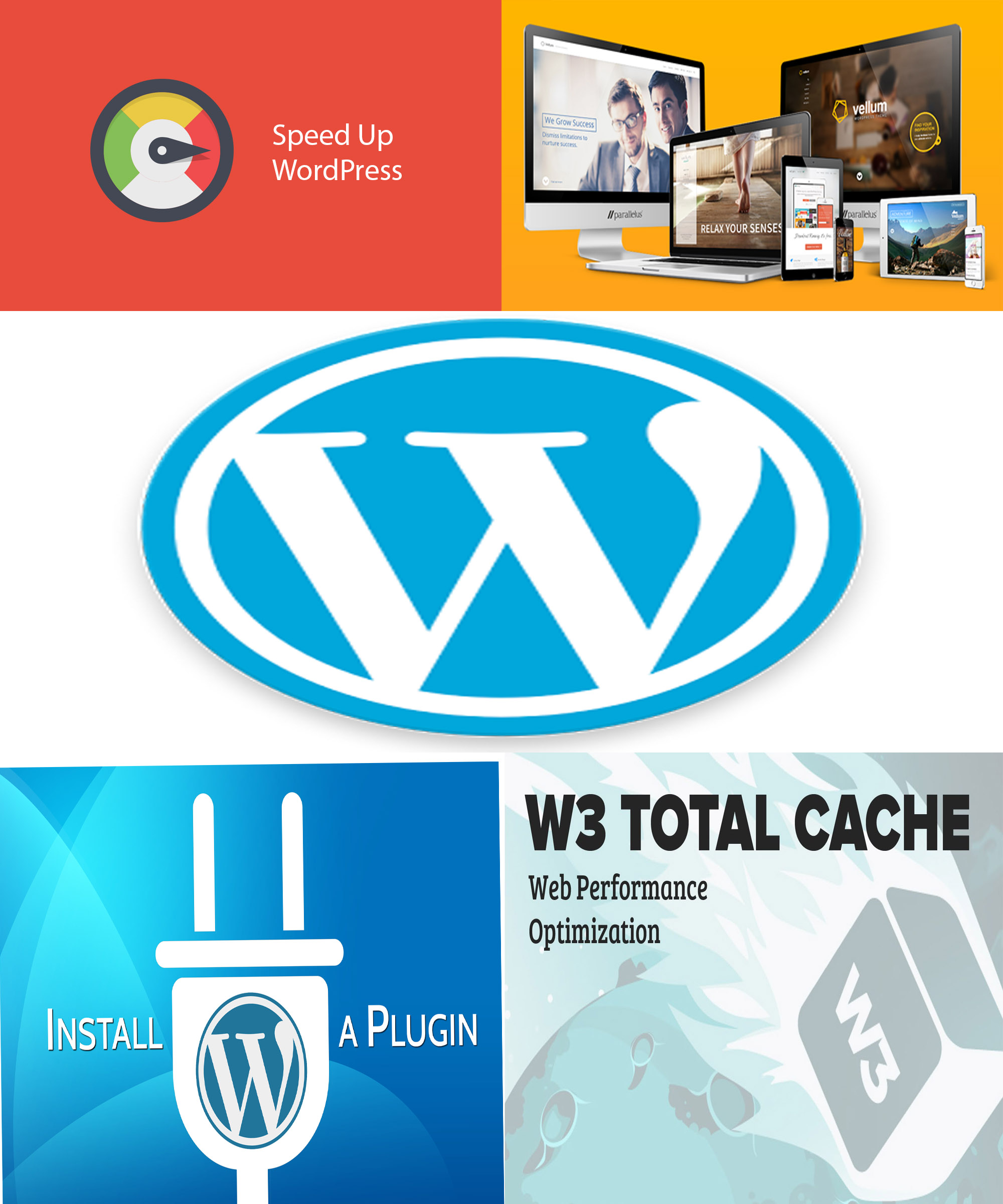 Install Wordpress,  Customize Themes