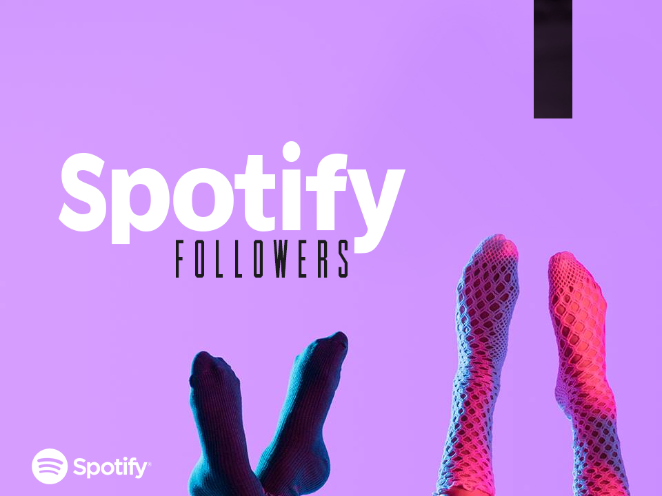1200+ Real Spotify Followers