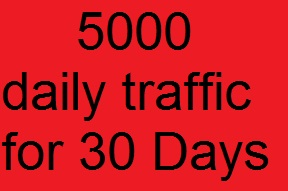 5000 daily high quality adsense safe real human traffic for 30 days