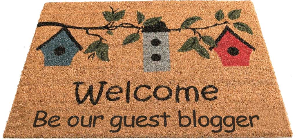 Multiple websites available for Guest post for $5
