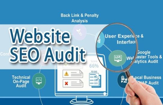Provide Expert SEO Report Plan, Competitor Analysis And Audit