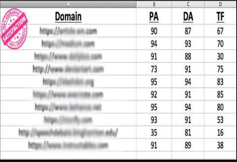 Rank To Google 1 Page With HIgh PA. DA, CF, TF 10 PBNS Backlink and 40 EDU/GOV Backlinks