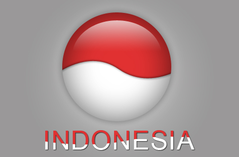 Need help in Indonesia just contact me