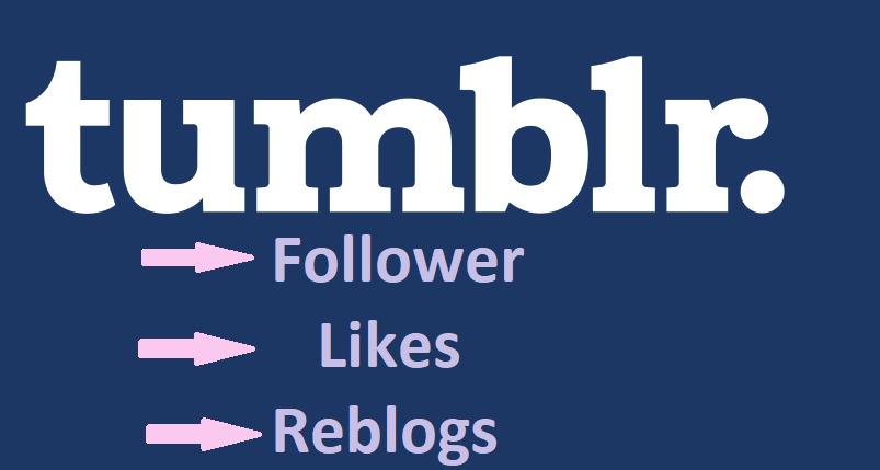 200+ Tumblr Follower/Like/Reblog with High Quality & USA Based tumblr accounts