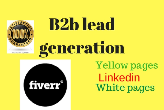 Do 100 professional b2b lead generation