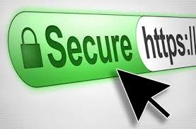 Get an True Business ID SSL Certificate.
