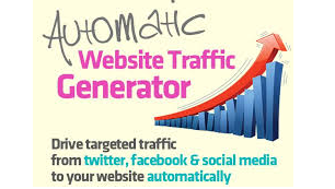 100,000 web real human visitors worldwide to your website/blog directly