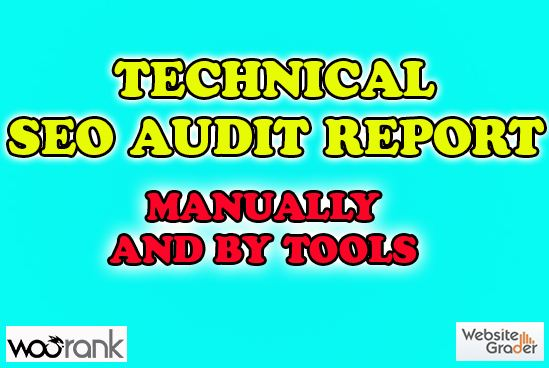 Provide SEO Audit Report You And Your Competitor Wordpress Website