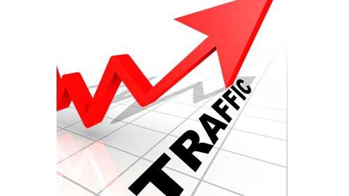 daily 10000 organic and keyword traffic software