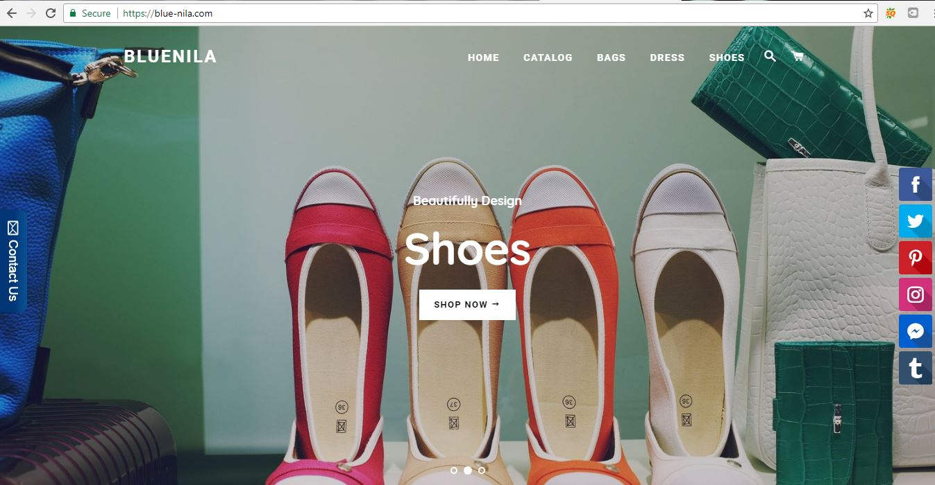 will build shopify drop shipping store for you to start a business