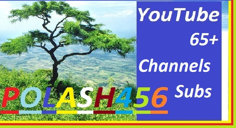 Give You Instant 100 YouTube Subscriber Non Drop Grantee, Yours Channels Adds