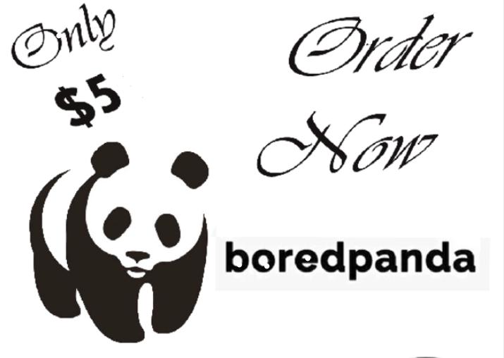 Publish Article a guest post On Boredpanda. com Da 80+