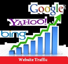 give you 1000 real web visitor in 24 houres