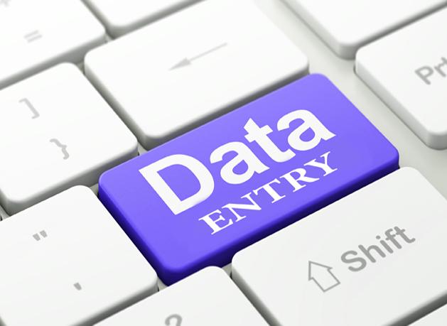 I'll do correctly Data Entry and copy paste tasks