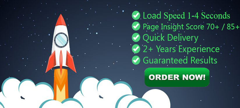 Optimize And Increase WordPress Speed In 24 Hours