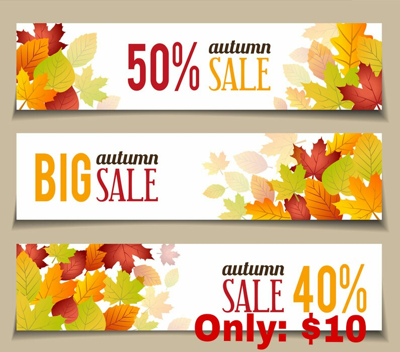 Design professional web banner for your Businesses and website within 24-84 hours
