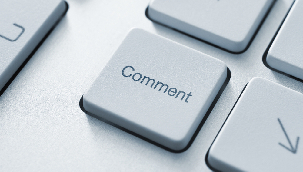 Provide You 30 Blog Comment For Your Site
