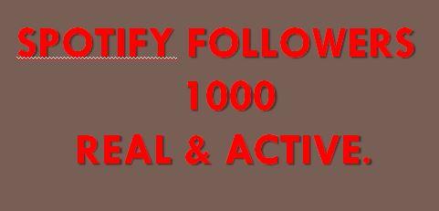 you get high quality non-drop 1000 Spotify Followers lifetime guaranteed