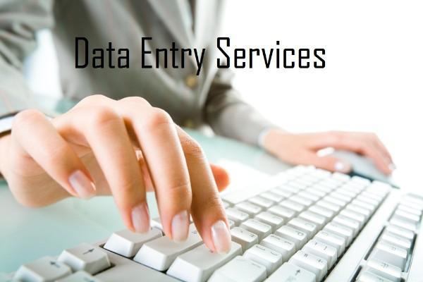 do any any type dataentry tasks