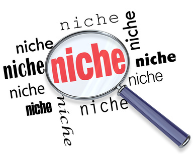 Do 20 Highly professional Niche Research