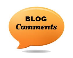 Provide Blog Comment for you