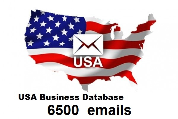 6500 usa business email for 5