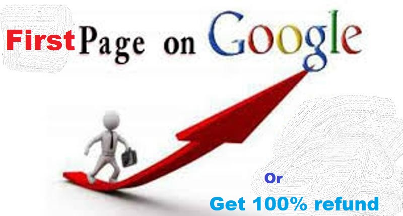 do monthly Whit hat SEO to rank Website 1st page on google