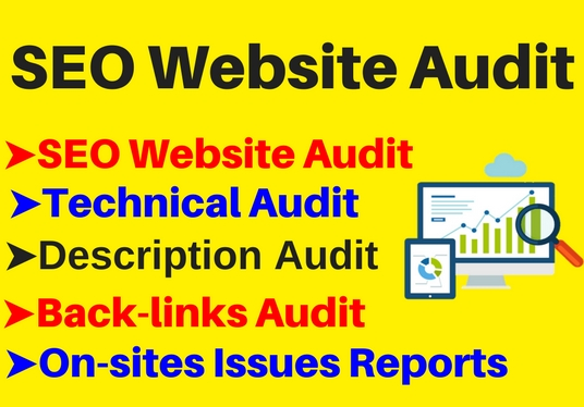 In Depth Website Audit And Spy Report