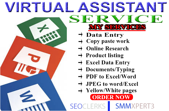 Xpert Data Entry And Web Research Work With Fast Delivery