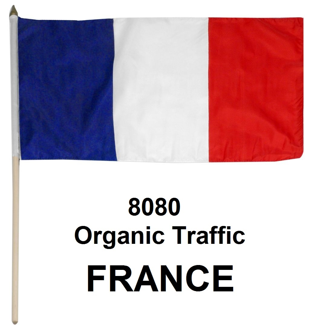 More than 7070 Real Organic Traffic from France,  USA