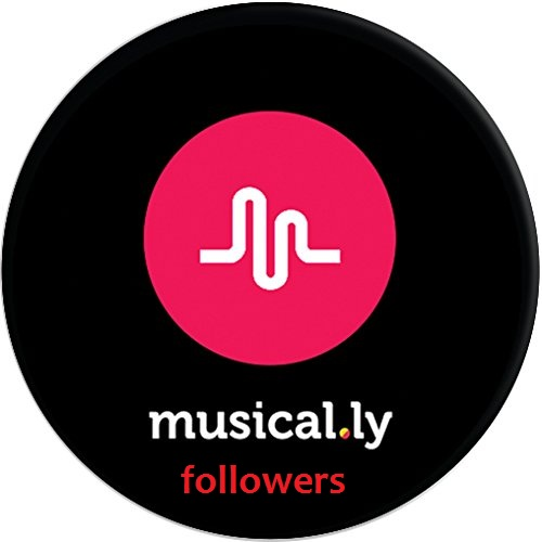 Good 30 musical. ly followers receive