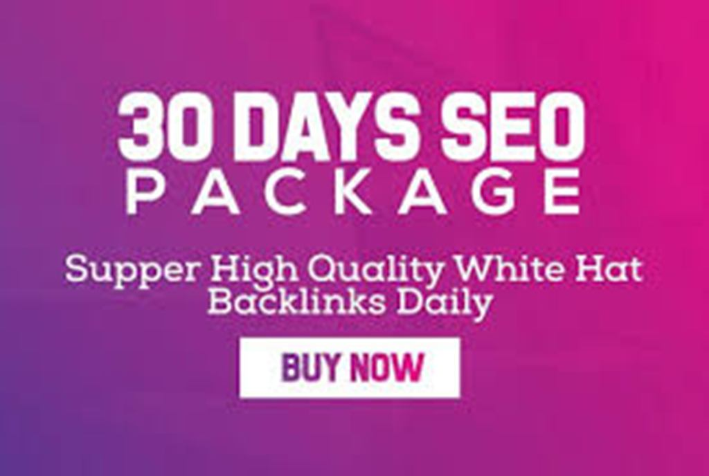 do 30 days SEO service, daily whitehat backlinks package