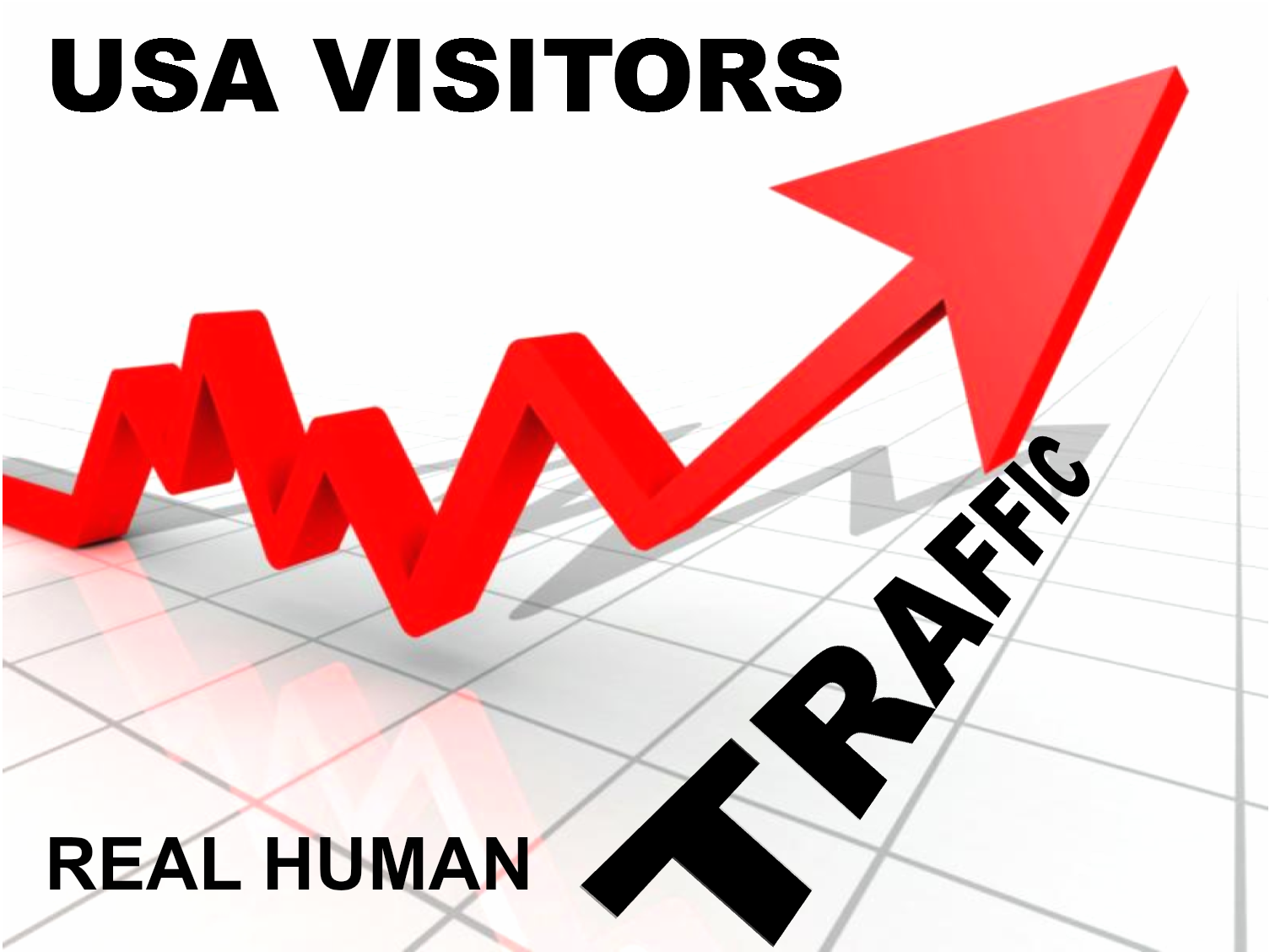 Deliver USA 1000 Website Visitors►► Real Ad sense Safe