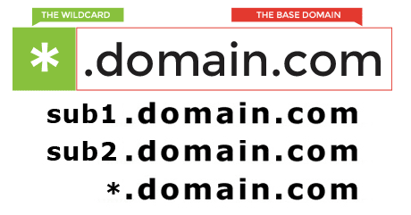 Creation,  Setup & Issuance of a Wildcard SSL Certificate For 1-Year