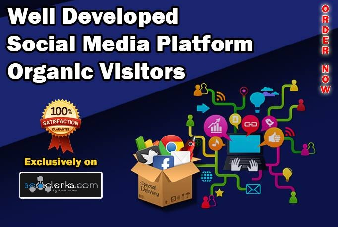 Drive 10,000 Well Developed Social Media Platform Organic Visitors Within 48 Hours