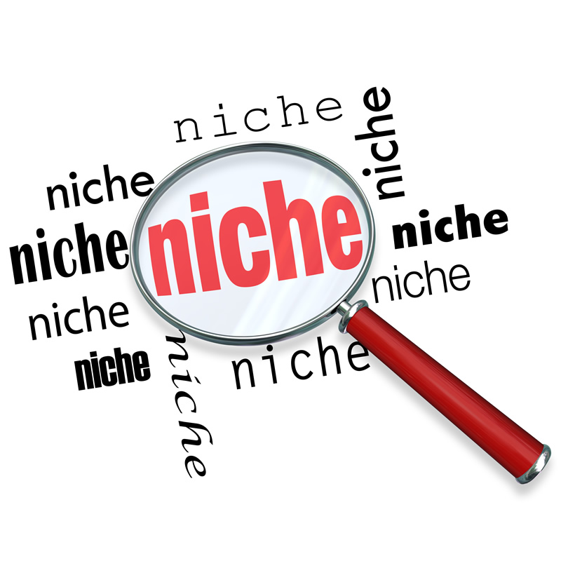 20 Highly Profitable Niche Research