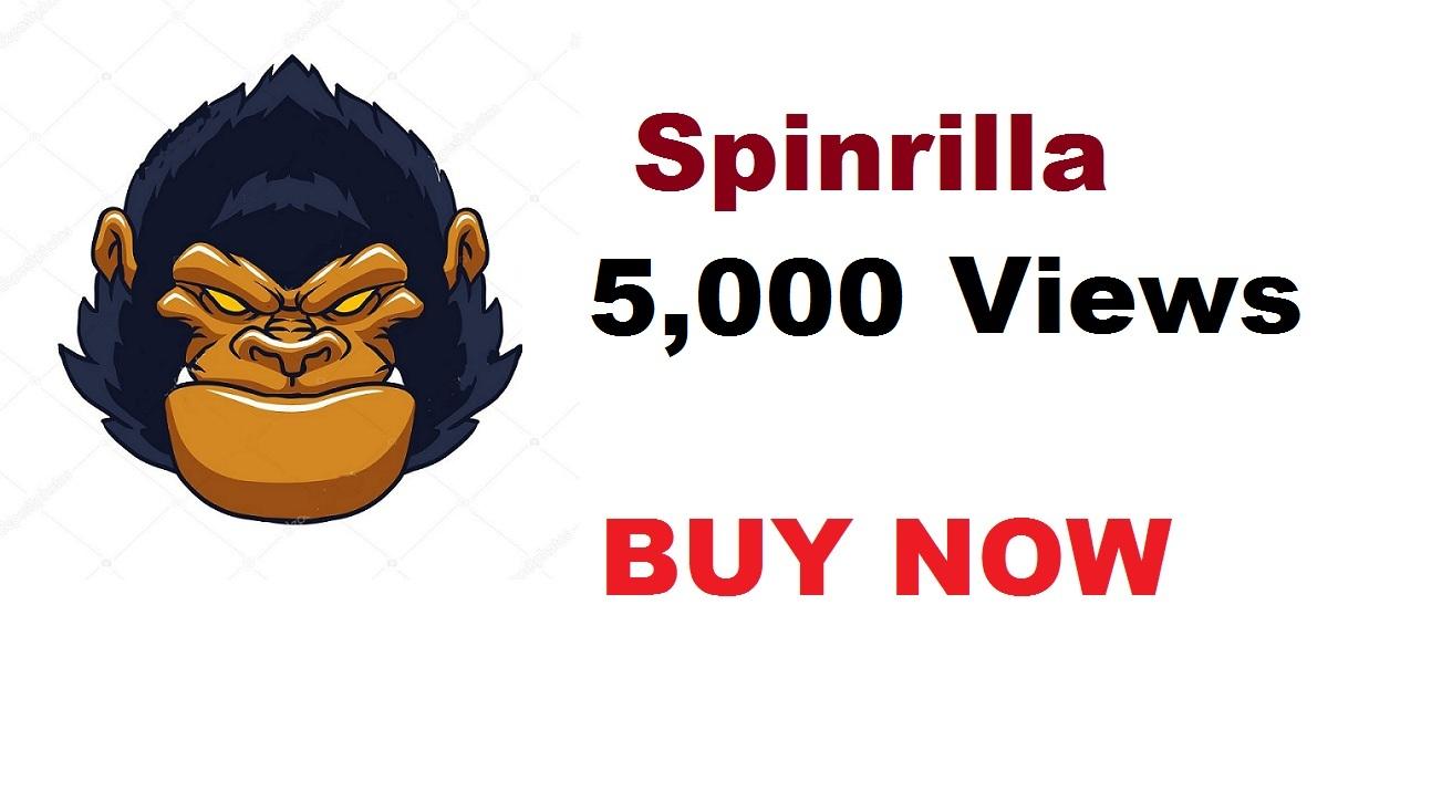 5,000 views for spinrilla mixtape