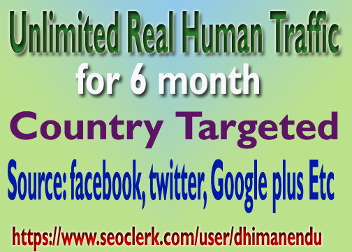 Unlimited Real Human Country Targeted Website TRAFFIC for 6 months