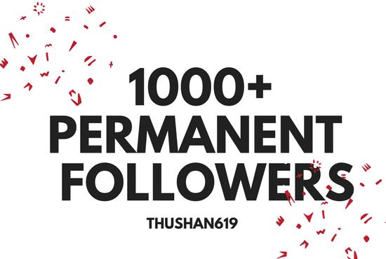 1000  Instant HQ permanent social media Followers
