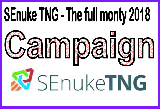 Do SEO to rank website PR higher with SEnuke - SEnuke TNG - The full monty 2018 - Campaign
