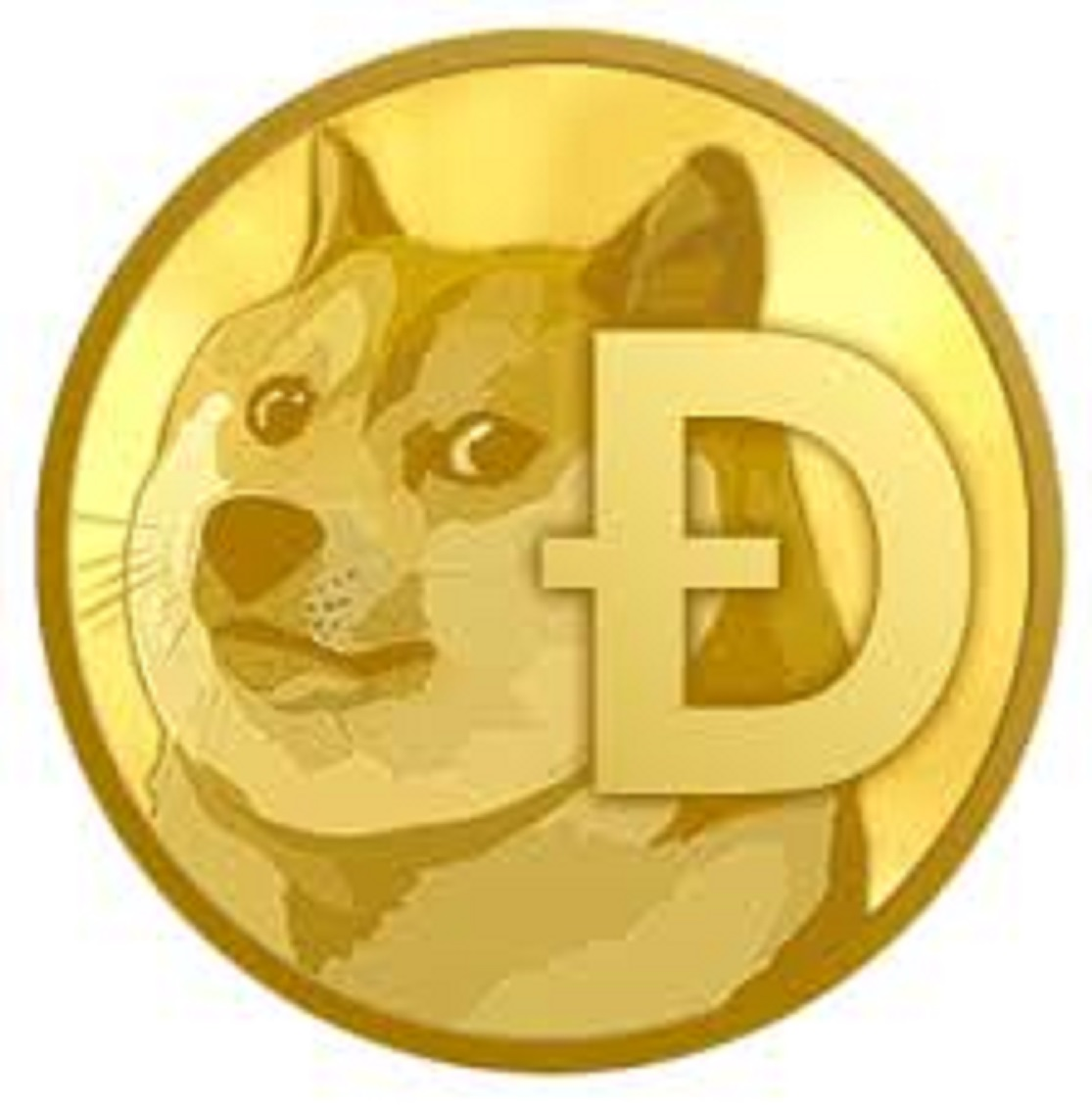 Doge Coin Mining 1.2 TH/s Mining Speed 24 Hours