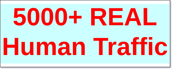 5000+ REAL Human traffic Traffic For Your Website / Blog