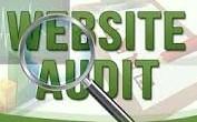 Provide SEO Audit Report