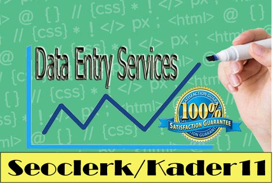 I can Do Any Data Entry Jobs for