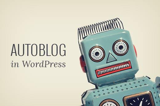 I will design amazon auto blog affiliate website