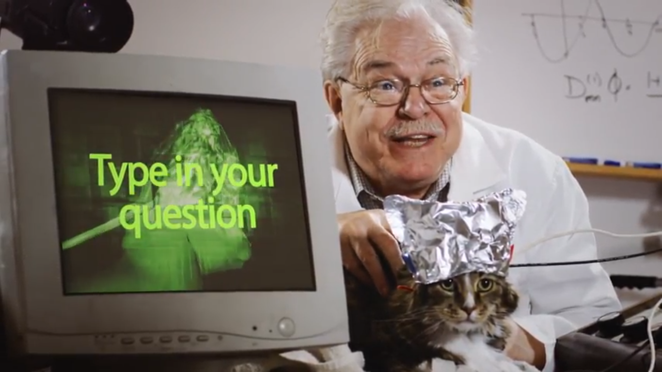 Make This Funny Promotional Cat Video